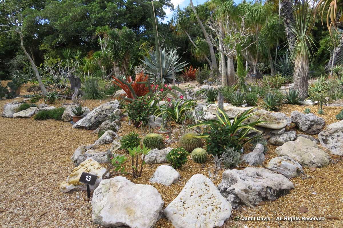 Cacti & Succulent Garden-Marie Selby Botanical Gardens