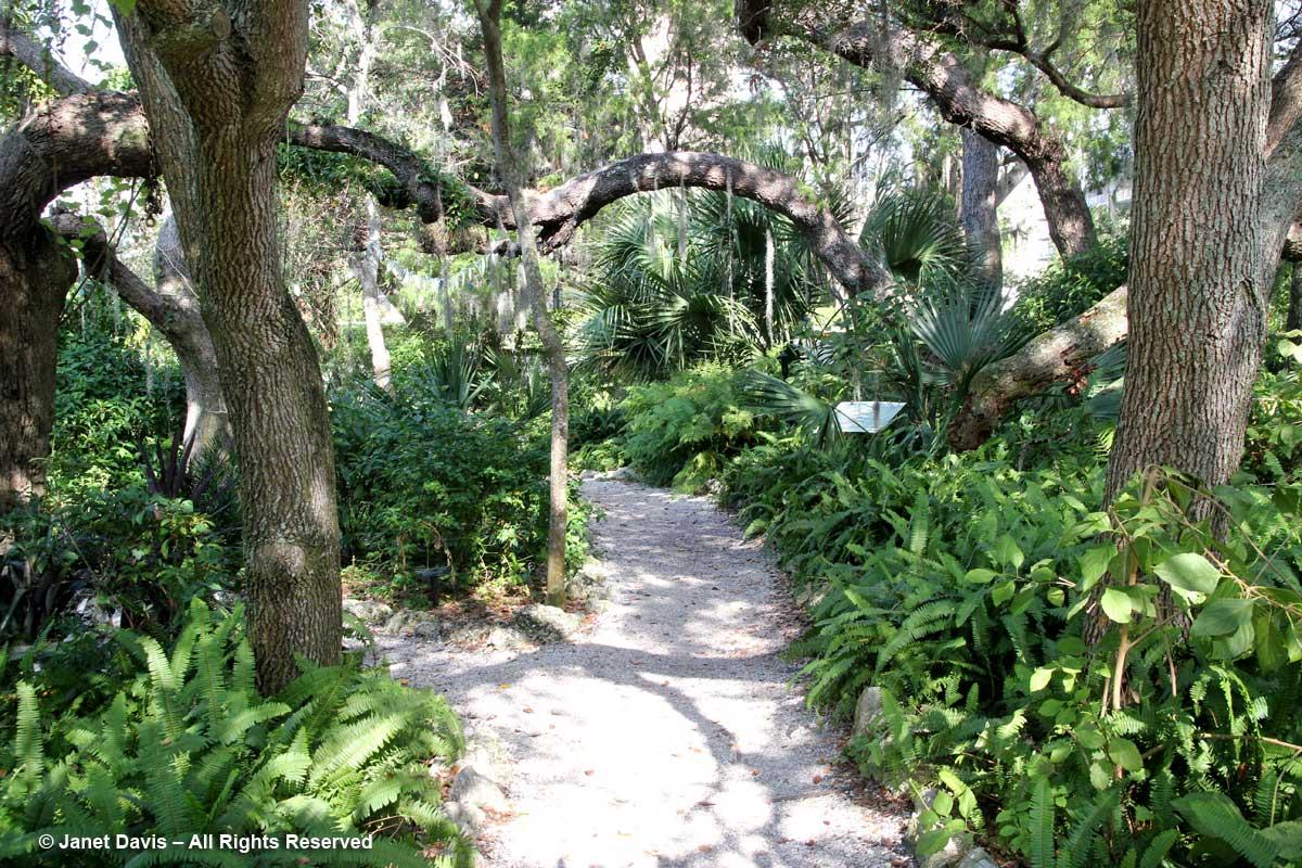 Florida Hammock-Marie Selby Botanical Gardens