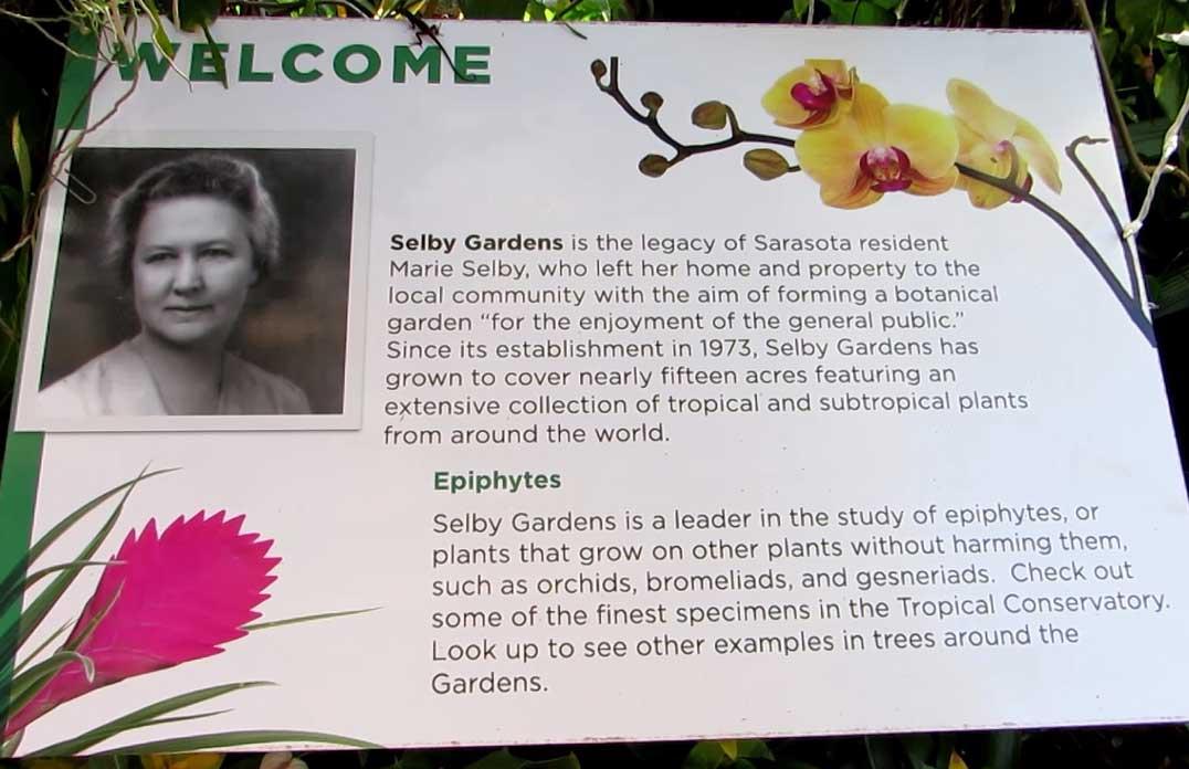 Marie Selby Botanical Garden-Epiphyte Mandate