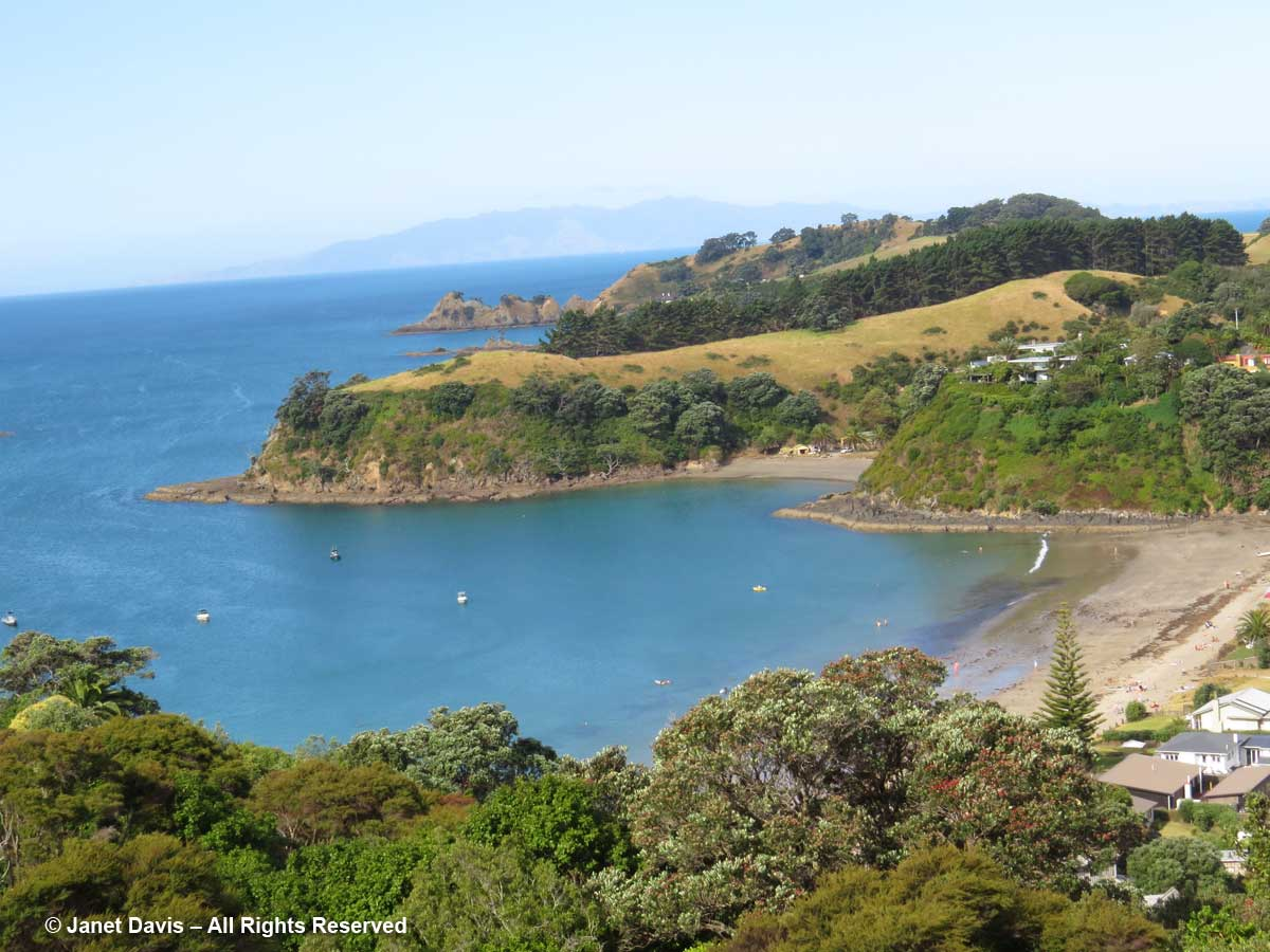 Beach-Waiheke