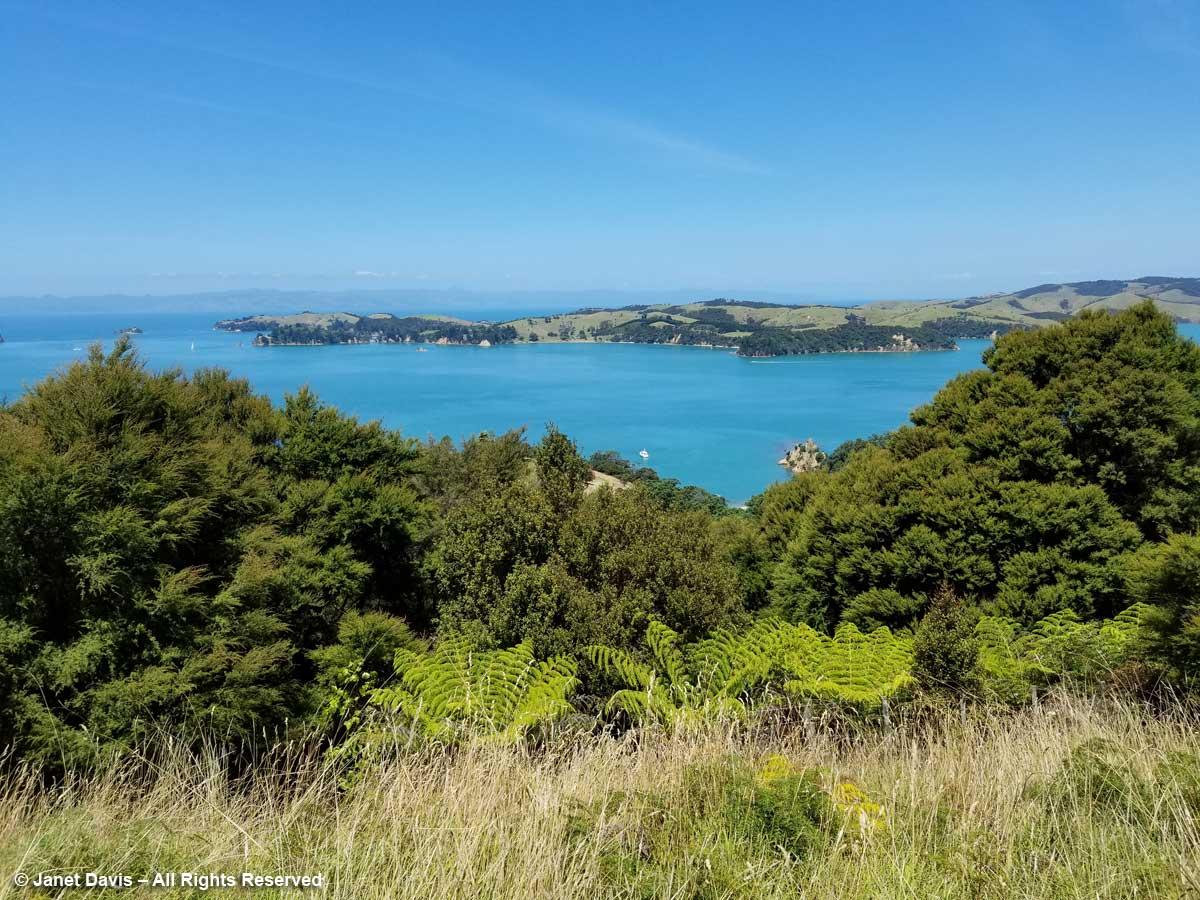 Connells Bay & Rotaroa-Waiheke