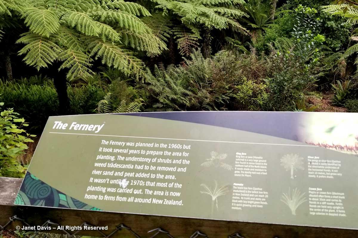 Fernery sign-Otari-Wilton's Bush