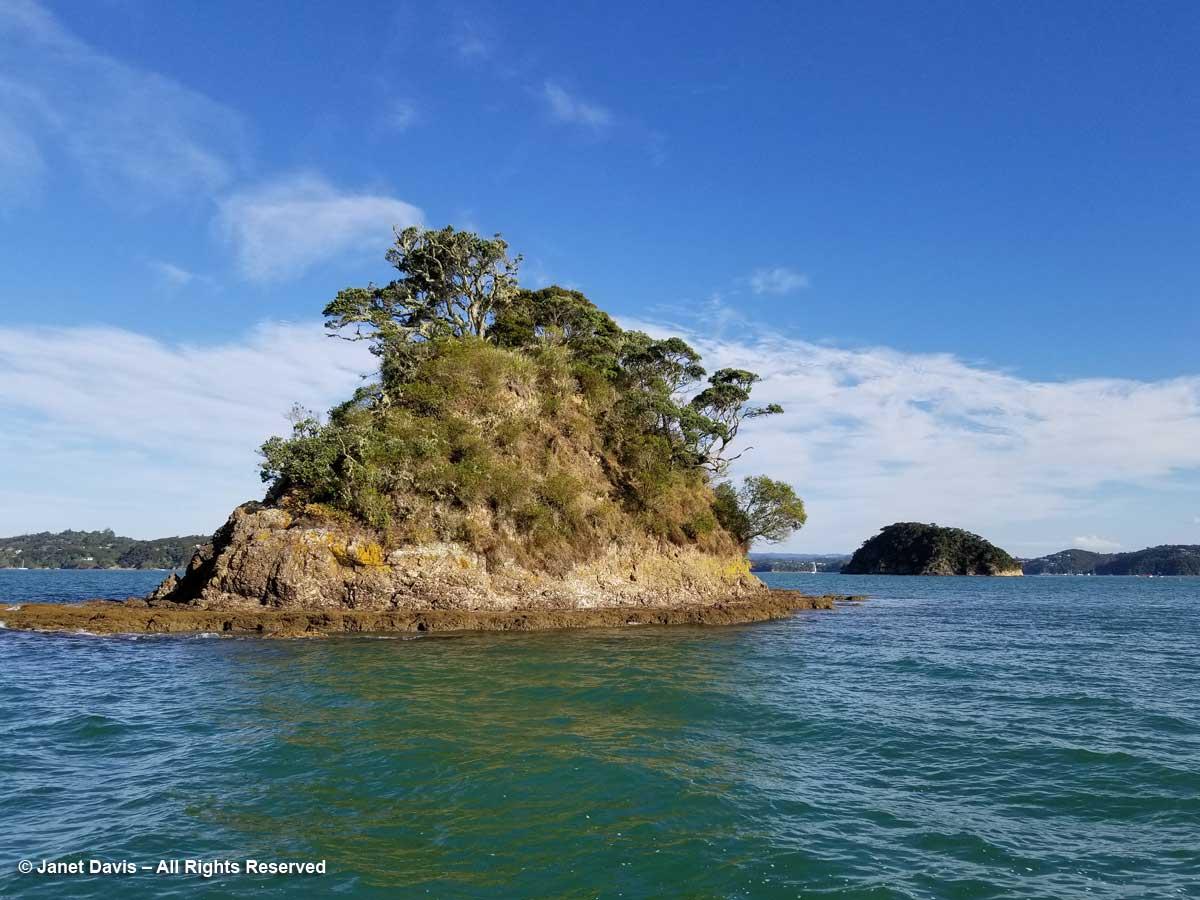 Island-Paihia Bay