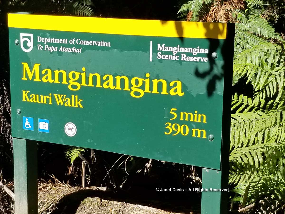 Manginangina-sign-Puketi Forest