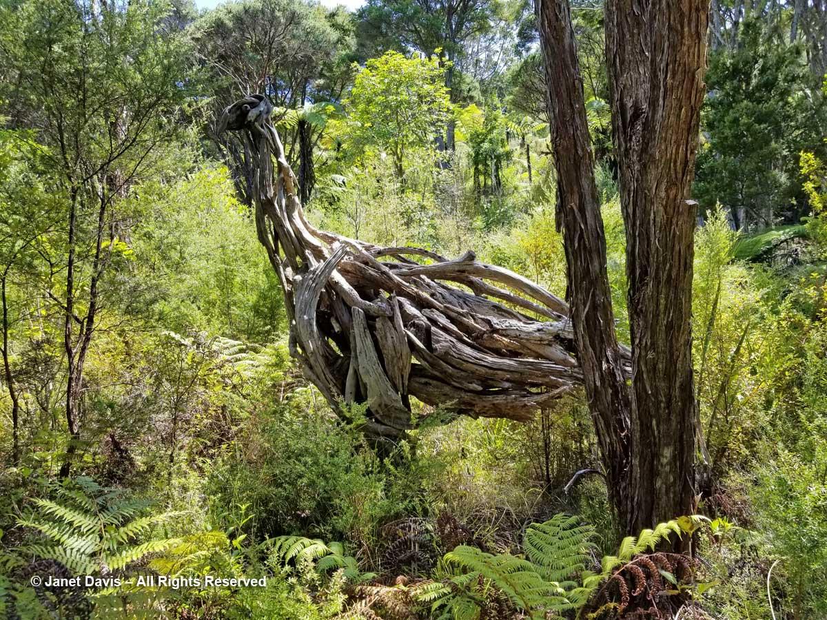 Moa-sculpture-Jack Marsden-Meyer-Omaio
