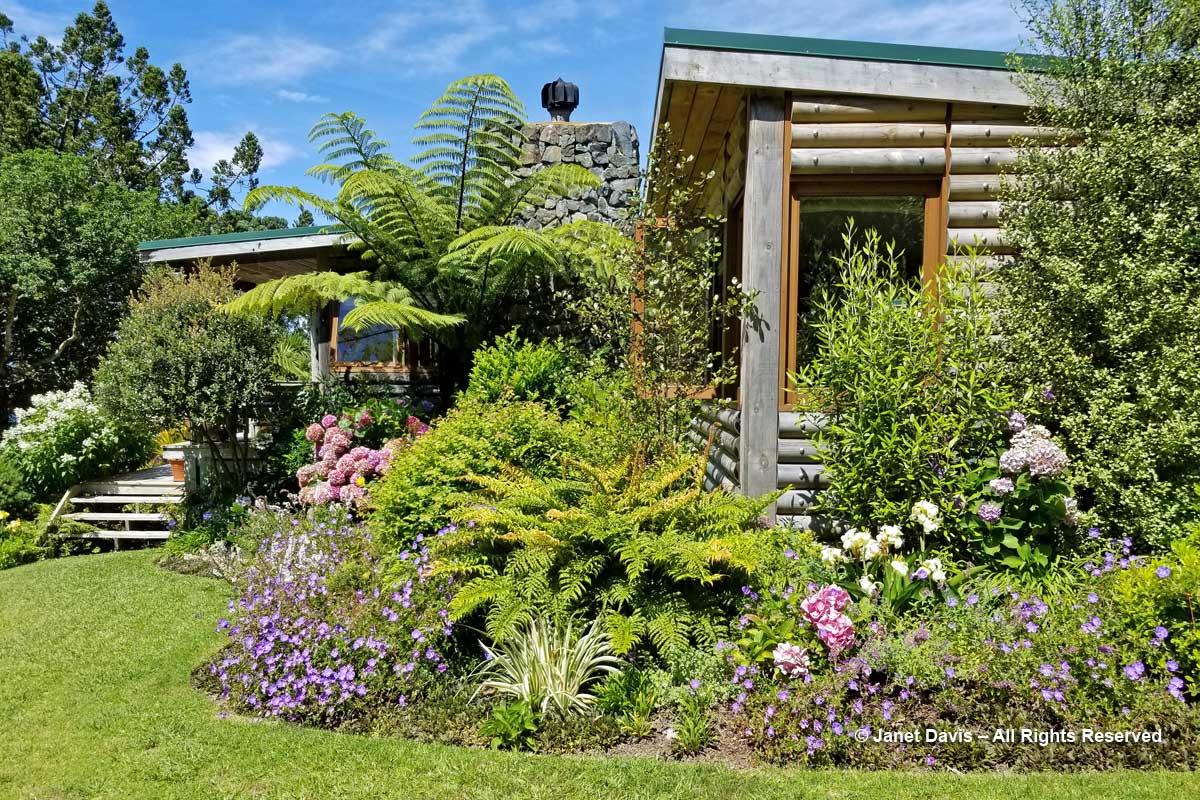 Omaio-House garden