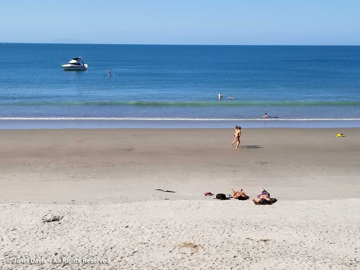 Sunbathers on beach-Waiheke