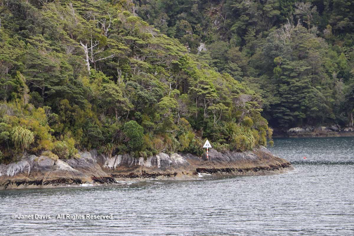 Elizabeth Island-Taipari Ro Marine Preserve