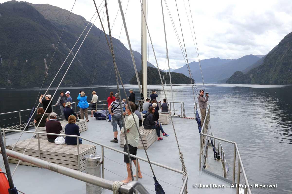 Fiordland Navigator-Into Doubtful Sound