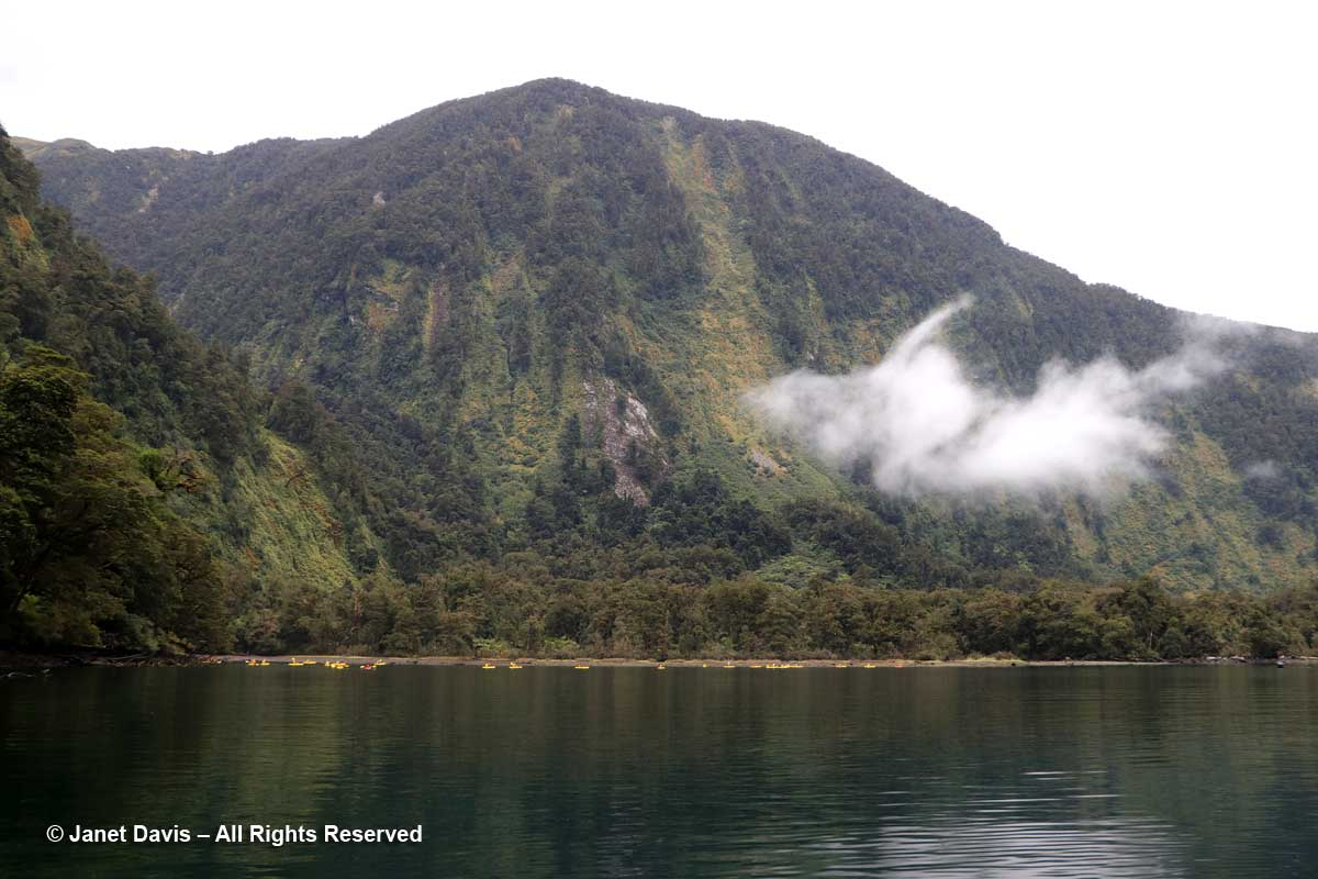Kayaks-Doubtful Sound-Fiordland