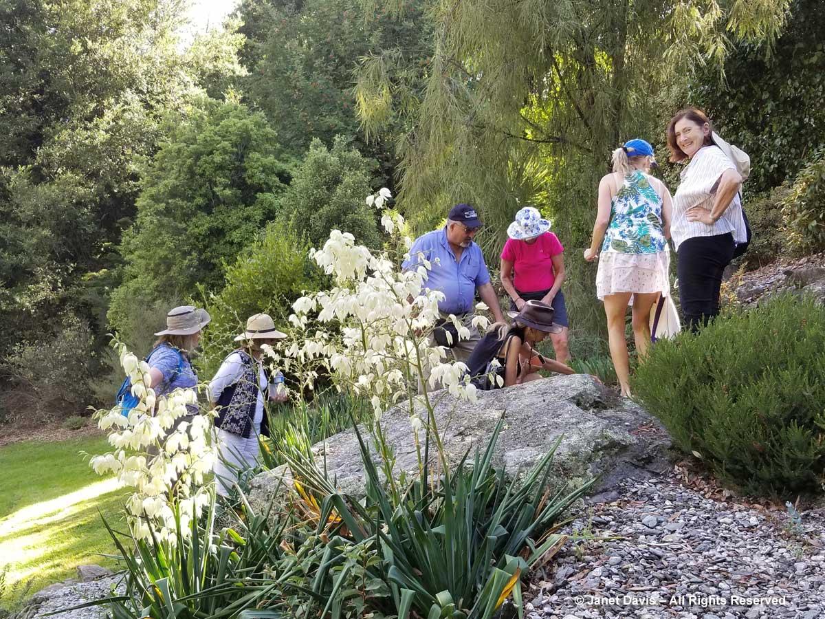 Panayoti Kelaidis-Queenstown Public Garden2