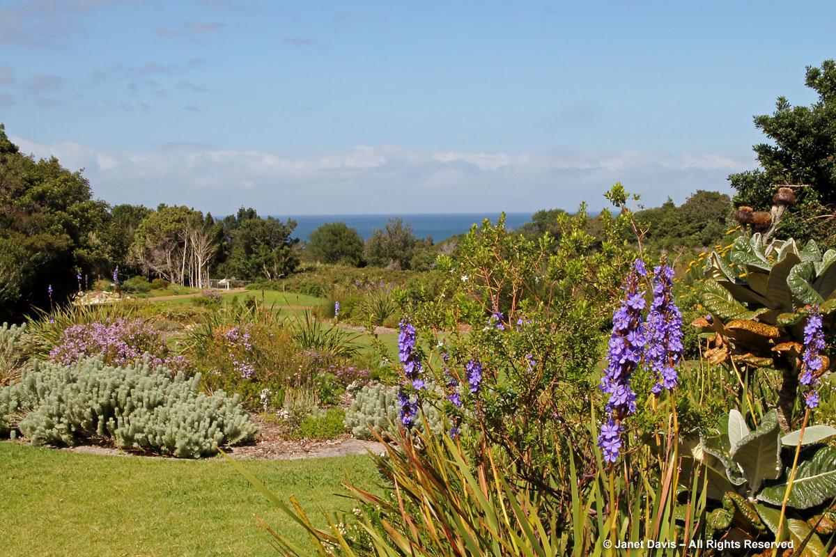 Les jardins botaniques d'Afrique du Sud
