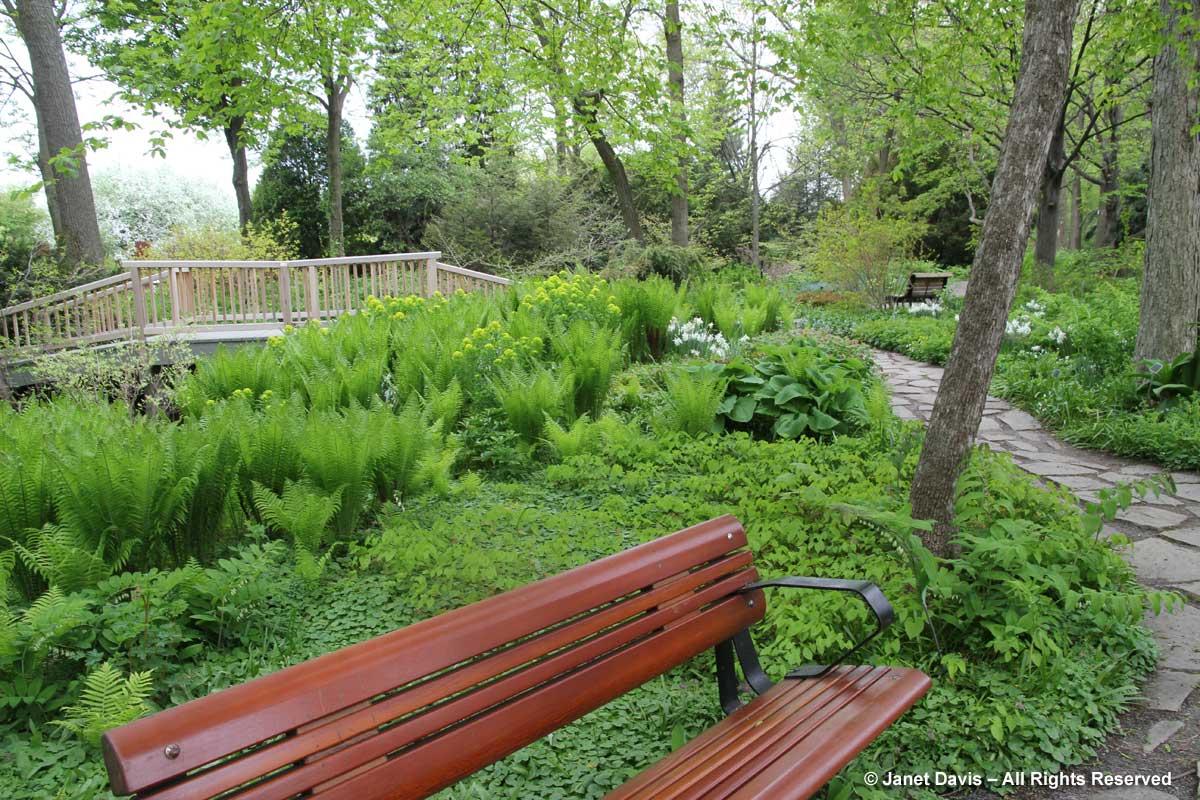 Heavy Duty Counter Stools, A Shade Garden Master Class Janet Davis Explores Colour