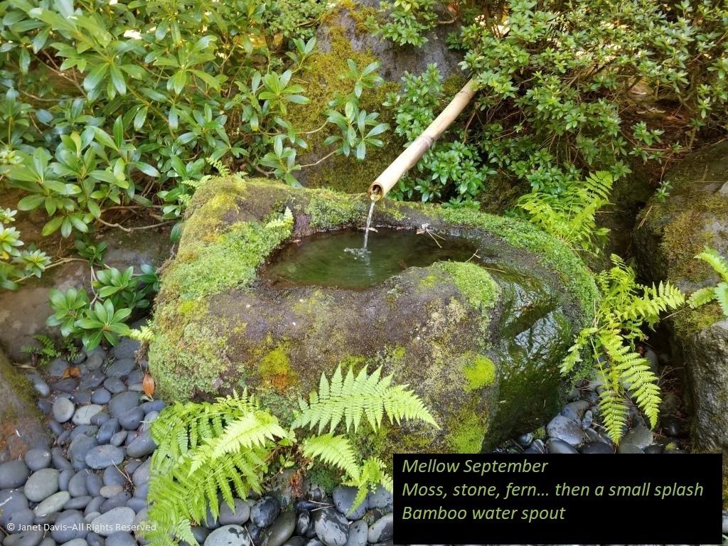 Portland S Japanese Garden A Haiku In Green Janet Davis